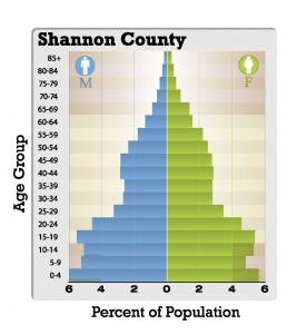 Shannon County SD population pyramid