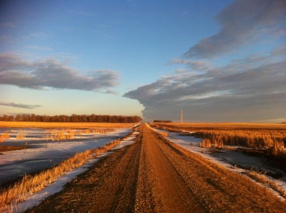 South Dakota gravel road during a mild winter. Photo by Heidi Marttila-Losure.