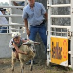 Carter Schulte shows professional skills at mutton bustin' as Saddle Club President Chad Homan keeps a vigilant eye on the proceedings on July 2 in Faulkton. Photo by Faulk County Record