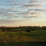 Haybales in South Dakota