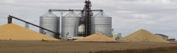 North Central Farmers Elevator in Faulkton. Photo by Faulk County Record.