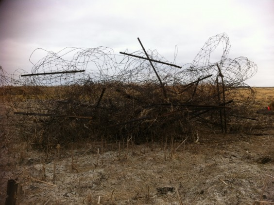 Fence removed from farmland. By Heidi Marttila-Losure