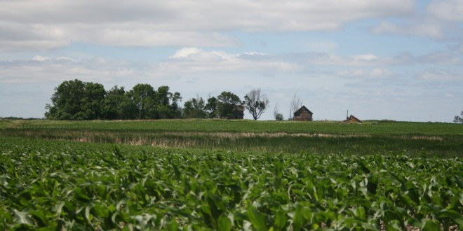 FiredUp: Understanding the complicated system of GMOs will require many conversations