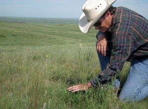 Todd Mortenson on the Mortenson Ranch in Stanley County, S.D.