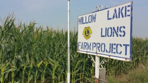 One unique aspect of the Willow Lake Lions Club is its funding source: Members pool their labor and resources to farm 30 acres, and the profits fund the club's community work. Photo by Kristin Brekke Vandersnick