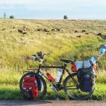 American Bison / Day 30 / Yankton, South Dakota / Mile 1,304 / Photo by Chris Register/www.conversationswithus.com
